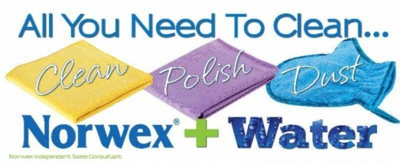 all-you-need-to-clean-banner-680x283